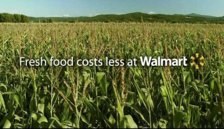 Linsey Bell-WalMart Field  To Table